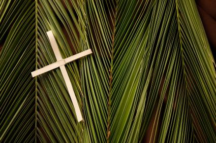 130134-425x282-Palm-and-Cross