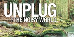Unplug from the noisy world