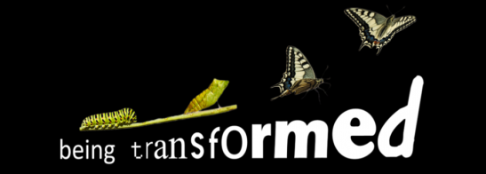 Being-transformed_resize-950x342