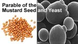 parable-of-mustard-and-yeast