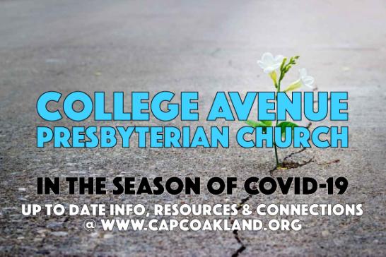 CAPC Covid19 Icon2